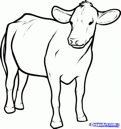 Cow Drawing Outline by How To Draw Cattle Step By Step Farm Animals Animals Free Drawing Tutorial Added By