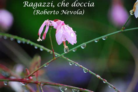 ragazzi in doccia page 2 171 concorso 2013 associazione nuova micologia