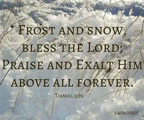 book  daniel     quotes  snow    scriptures typically