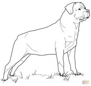 Rottweiler Coloring Page Free Printable Coloring Pages Rottweiler Coloring Pages