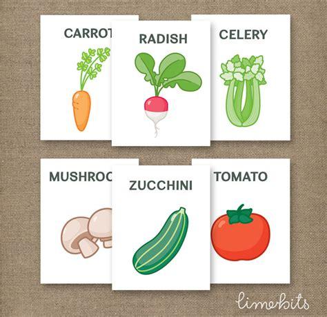 vegetable flashcards printable vegetable flash cards printable 4x5in