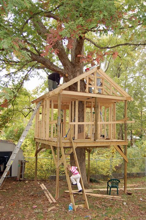 how do i build a house pictures of tree houses and play houses from around the