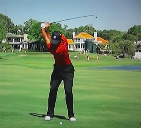 tigers golf swing 8 best images about winter golf on pinterest