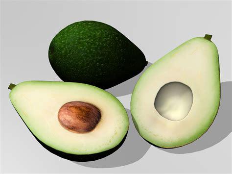 Avocado 3d Model Free