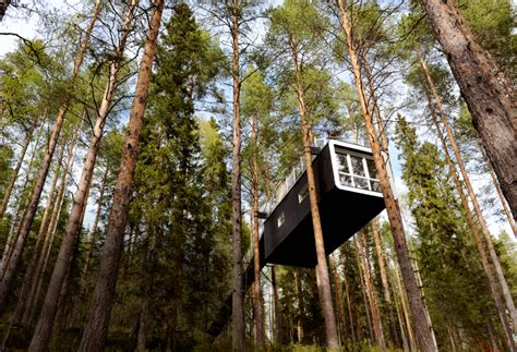 Tree Hotel Sweden | 40 eco hotels to visit before you die matador network
