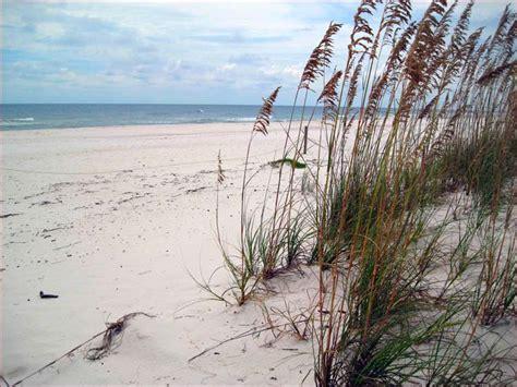 beach house gulf shores alabama gulf shores beach house gulf shores luxury 4 bedroom beachfront sleeps 8 225 333 8813
