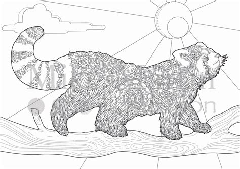 red panda coloring page az coloring pages