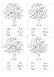 Worksheets gt environment and nature gt parts of a tree gt parts of tree