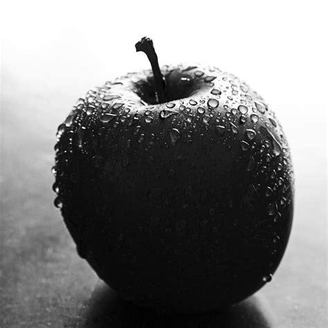 apple black apple in black and white photograph by zoe ferrie