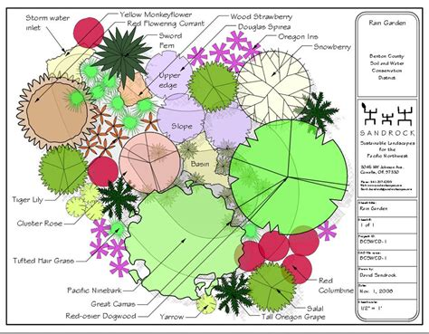 Plans for Using Native Plants in Your Home Landscaping