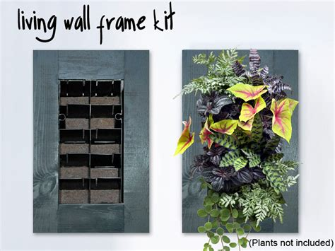 Diy Vertical Garden Kit Indoor Living Wall Kit With Rustic Frame Diy Projects