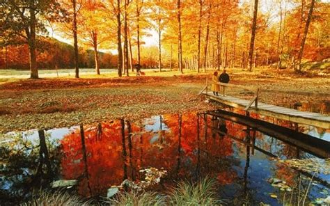 england   fall expert holiday planner