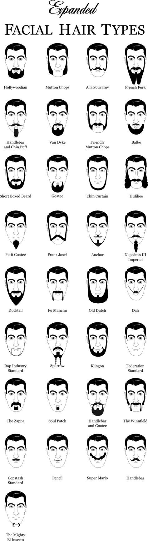 beard style names expanded beard type chart jon dyer