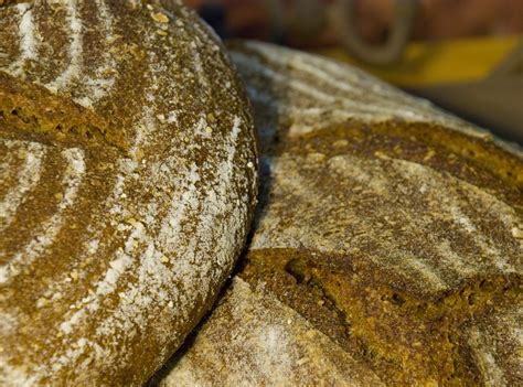 125 hydration starter multi starter multi grain sourdough the fresh loaf