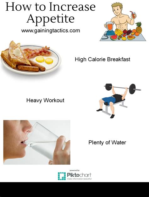 How To Gain by How To Increase Appetite And Gain Weight Gaining Tactics
