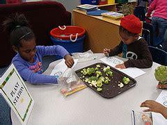 Missouri Botanical Garden Classes Outreach Programs