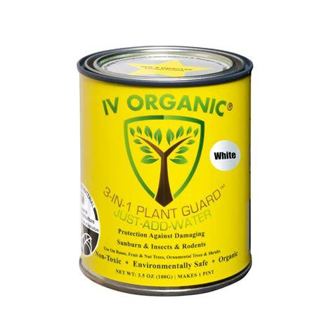 Window Treatment Ideas Kitchen 3 5 oz tree guard paint protection against damaging