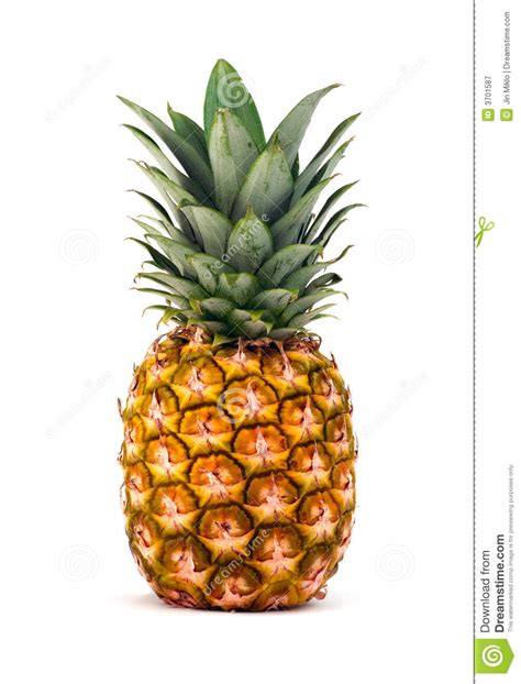 Pineapple Wallpaper by Pineapple On White Background Royalty Free Stock