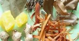 khasiat bahan ramuan wedange mbah darmo mbah darmo