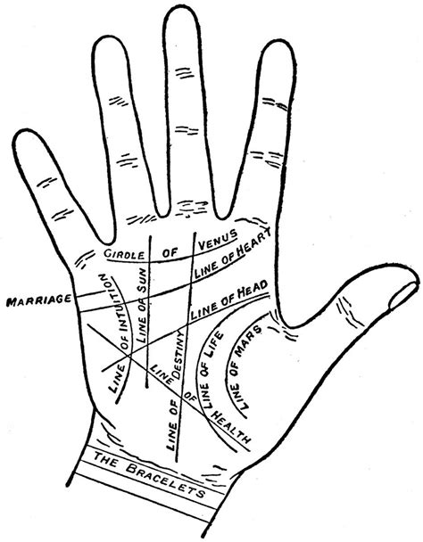 palm reading diagram the esoteric ursi s eso garden