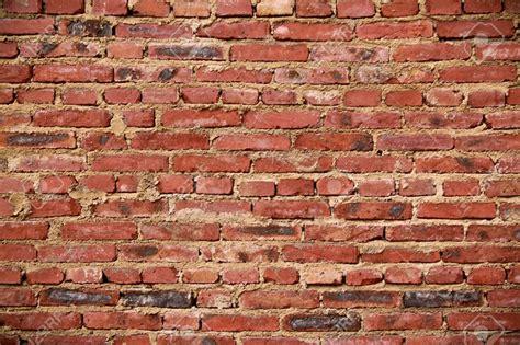 klinker tapete brick wallpaper stock
