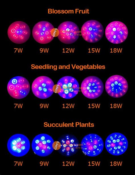 led vegetable grow lights 25 best ideas about grow lights on plant grow