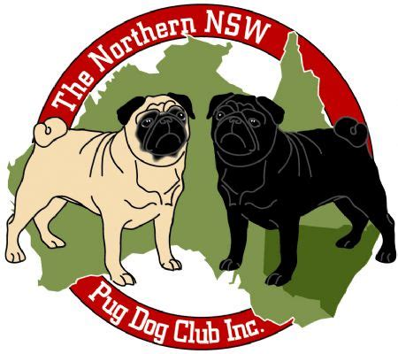 pugs nsw the northern nsw pug club inc