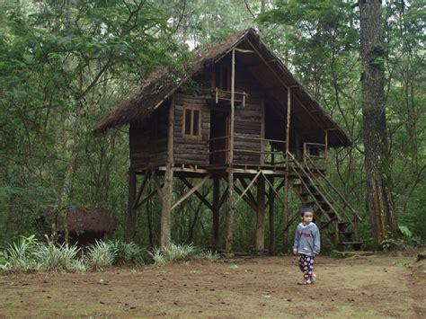 Feed Indonesia gambar mewarnai gambar rumah adat indonesia pohon feed