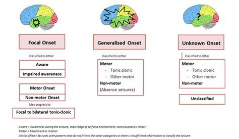 focal motor seizure symptoms seizure types and classification epilepsy australia