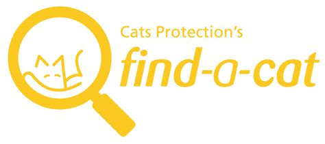 What Is Finder Cats Protection Uk S Largest Feline Welfare Charity