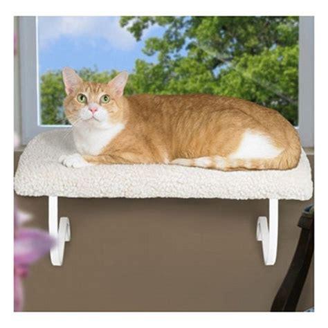 Cat Windowsill Perch cat window perch cat supplies rabbitmart