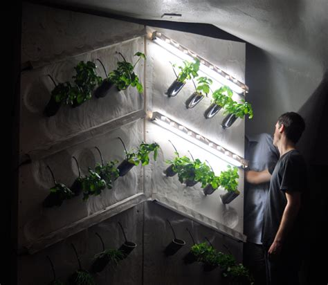 Hydroponic Wine Bottle Wall Garden At Student Bar Urban Hydroponic Wall Garden