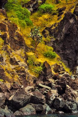 Imaginative Landscape Essays by Imaginative Landscape Essays Island