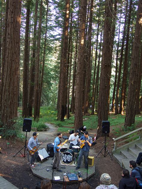 Redwood Gardens by Concerts Chance To Enjoy Secret Berkeley Redwood Grove