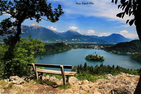 Tiny Cabin all you need to know to visit lake bled slovenia
