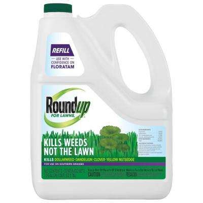 does roundup kill moss roundup lawn killer killer the home depot