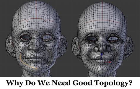 3d Model Topology why do we need topology in 3d modeling
