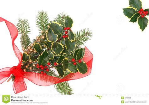 christmas decorations with berries decorations with berries royalty free stock image image 3709936
