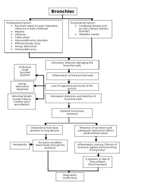 cystic fibrosis pathophysiology diagram bronchiectasis pathophysiology respiratory tract