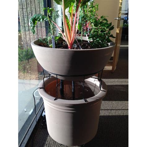 eden mini garden small aquapoinic system indoor outdoor