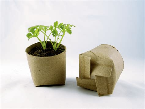 What To Make With Toilet Paper Rolls - 10 diy repurposed seed starting pots install it direct