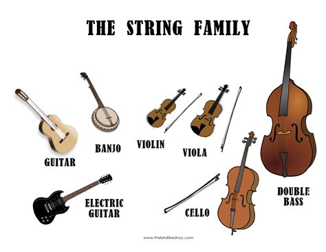 musical instruments family musical instrument families