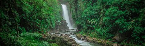 Charming Waterfall Gardens Costa Rica #2: 5-TOP-COSTA-RICA-WATERFALLS-YOU-MUST-VISIT-1.jpg