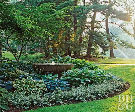 hosta garden ideas hosta filled shade garden