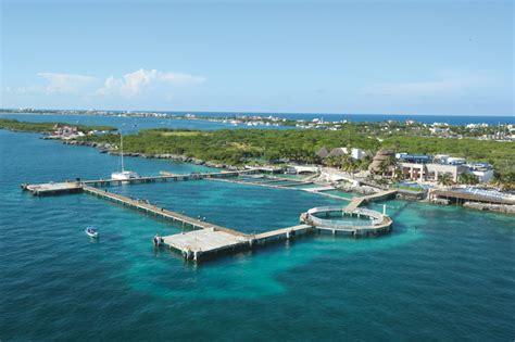 imagenes isla mujeres nado con delfines en cancun isla mujeres dolphin discovery