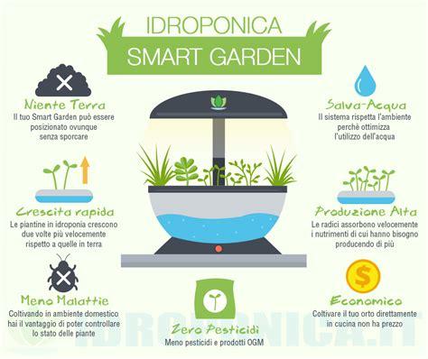 coltivazione idroponica in casa idroponica e sistemi idroponici i vantaggi di questo metodo