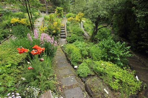 giardino botanico giardino botanico parco nazionale dello stelvio
