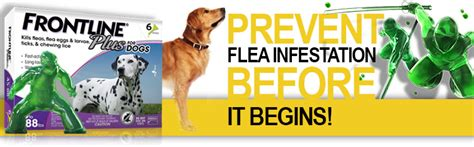 frontline plus for dogs frontline plus for dogs flea tick entirelypets