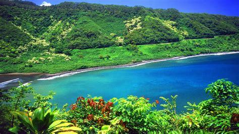 Search Hawaii Hawaii Aol Image Search Results