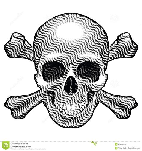skull and crossbones figure stock images image 24928694